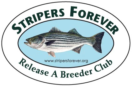 SF-release-a-breeder