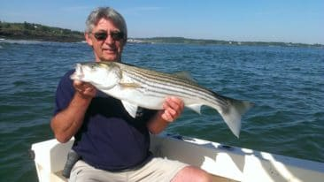 Maine Striped Bass Fishing