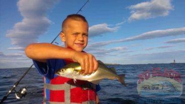Mackerel Fishing Maine