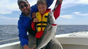 Maine Striped Bass Fishing